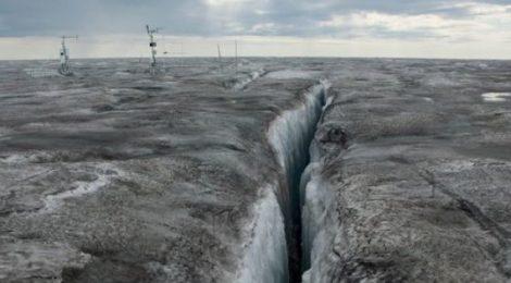 Las algas árticas que derriten el hielo de Groenlandia